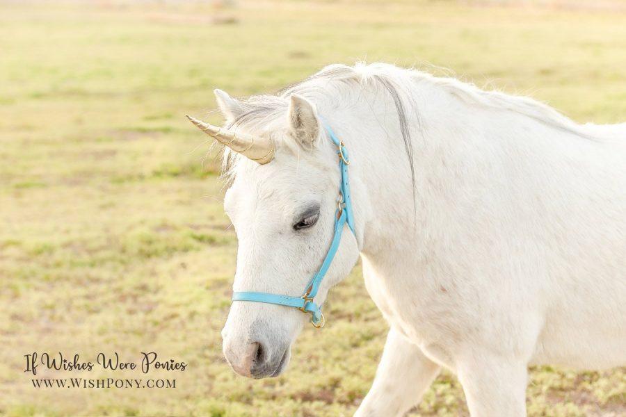 WishPony Metallic Gold Classic Unicorn Horn for Pony