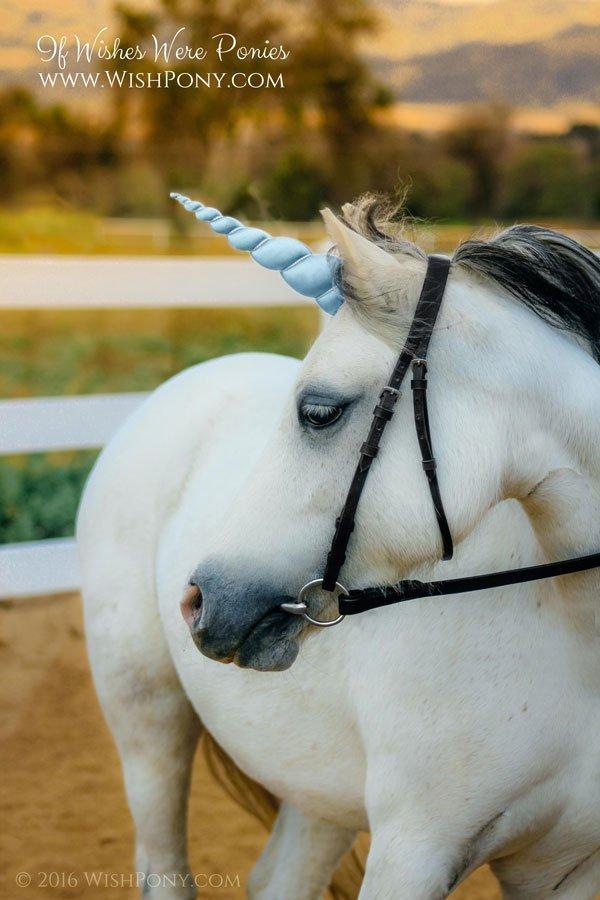Blue Unicorn Horn for Horse