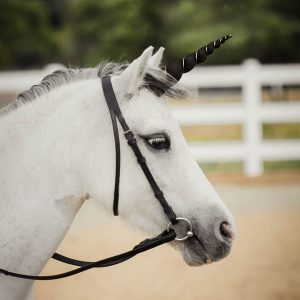 Wishpony Black & Platinum Unicorn Horn for Horse Pony