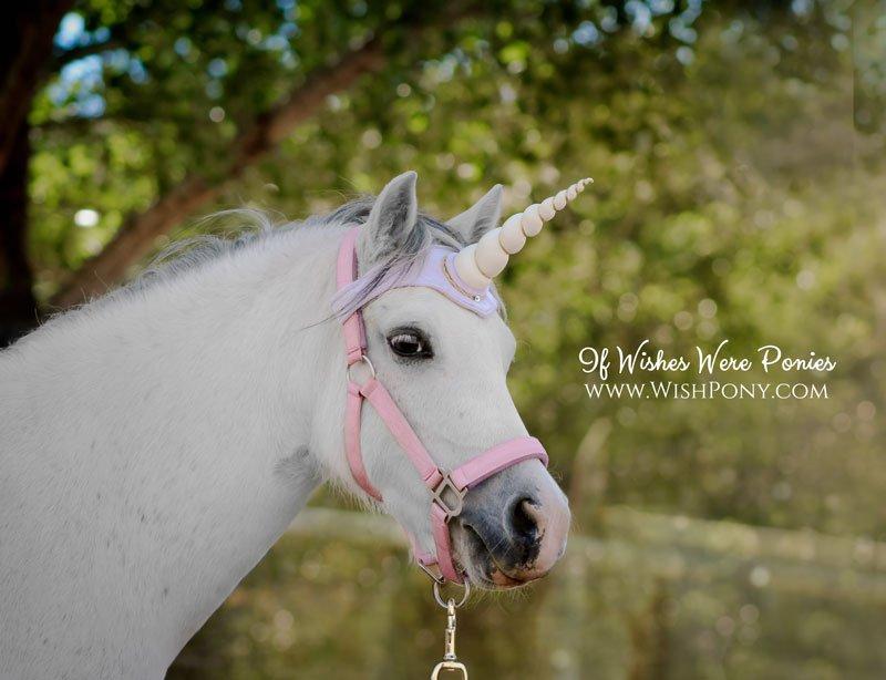 Ivory Unicorn Browband