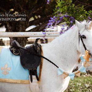 WishPony Unicorn Set