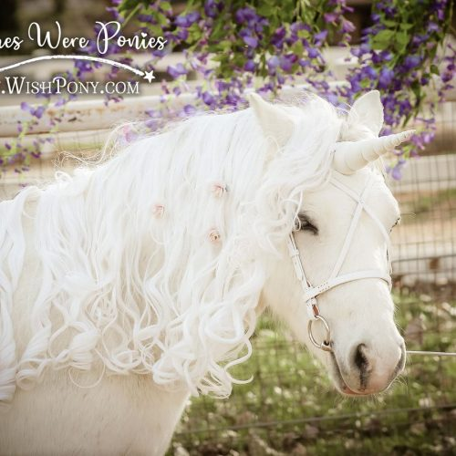 If Wishes Were Ponies Romantic White Bridle
